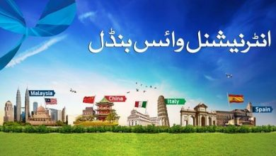 Telenor International Voice Bundle