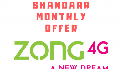 ZOng Shandaar Monthly offer