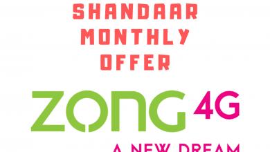ZOng Shandaar Monthly offer