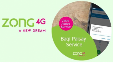 Zong Baqi Paisay Service